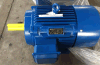 Ie2 (CE) ISO9001 Y Series Three Phase Electric Motor (Y160)