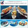 Cheap International Bulk Cargo Sea Shipping Container From China to Worldwide (Colombia)