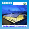 Flat Clear Tempered Glass Greenhouse for Commercial