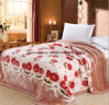 Factory Wholesale High Quality Raschel Embossed Super Soft Blanket