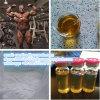 Steriod Hormone Powder Stano-Zolol for Body Building CAS: 10418-03-8