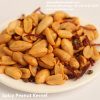Leisure Snack Roated Peanuts Groundnuts