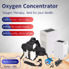 Psa Technology Hot Sale Portable Household High Purity Oxygen Concentrator