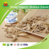 Manufacture Supply Dried Organic Boletus Edulis