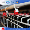 Nigeria Hot Sale Electro Galvanized Chicken Cage for Polutry Farms