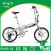 2017 Turkey 20inch Mini Folding Electric Bike with Burhsless Gear Motor 36V 250W