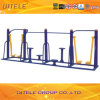 Outdoor Playground Gym Fitness Equipment (QTL-4501)