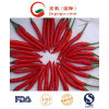 New Crop Chaotian Chili (3-5cm)