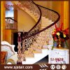 Interior Stainless Steel Railing/Security Metal Fence for Curved Staircase