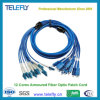 Indoor Armored 12 Cores SC/PC - LC/PC Armored Fiber Optic Patch Cord