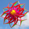 High Quality Sport Toy 3D Lotus Flower Kite with Thread
