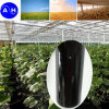 Enzymolysis Amino Acid Liquid for Organic Fertilizer