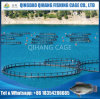 Aquaculture Floating Net Cage HDPE Fish Cage for Sea Farms
