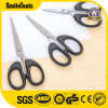 School Kids Scissors Craft Cutting Scissors From Factory