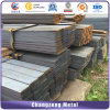 Mild Steel Hot Rolled Flat Steel Bar (CZ-F60)