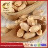 Hot Sale Roasted Peanut Kernel New Crop Origin: China