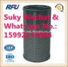 Oil Filters Auto Parts (31EE-01060)