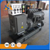 Professional 100-1100kw Generator for Perkins