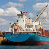 Sea Shipping Freight Agent From Shanghai/Ningbo to Tanzania/Alexandria/Beira/ Cape Town/Durban