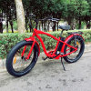 26inch Fat Tire E Bike for Men