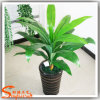 China Wholesales Artificial Fake Dracaena Fragrans Potted Plant