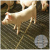 Yq Heavy Crimped Wire Mesh for Pig Raising Industry Use