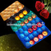 10 Years Gold Supplier PP Plastic Displaying and Packing Tray