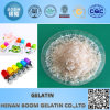Hot Selling Gelatin for Food/Industrial/Medical Application