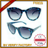 F6809 Cat Eye Tortoise Woman Retro Occhiali Sunglasses