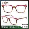 Fashion New Product Acetate Spectacle Eyewear
