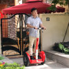 Outdoor Green Power Electric Scooter for Entertaining