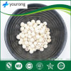 ISO Certificatied Manufacturer Supply 100%Natural Lotus Seed with Factory Price, Plant Extract