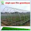 Low Cost Plastic Film Greenhouse for Garden