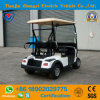 Zhongyi New Brand off Road 2 Seater Mini Golf Cart for Resort