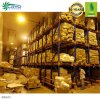 Sugar Beet Okra Extract Google Cold Storage Cold Storage Paragon Prefabricated Walk in Cooler