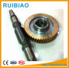 Worm Gear and Wheel Used for Construction Hoist Gearbox