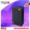 Professional Sound KTV Karaoke Speaker System