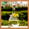 Transparent Crystal Glass Hanging Vases