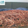 Tense Available Export 99.95% Copper Wire Scrap/ Copper Wire Scrap 99.95% with Good Quality in China Manufacture Cheap Scrap, Copper Wire Scrap Available Price