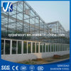 Easy Assemble Large Size Commercial Glass Greenhouse