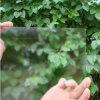 3.2-4mm Single/Double Ar Coating Solar Glass
