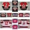 Ahl Albany River Rats Cody Mccormick Noah Babin Hockey Jerseys