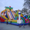 Commercial Grade Inflatable Swimming Pool Slide for Playing