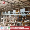 Layer Bird Cages Intelligent Control Farm Machinery Poultry Cages