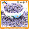 Chinese Health Herbal Tea Lavender Tea