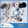 Manufacture Customized Strong Powerful Neodymium Magnet in Different Shape