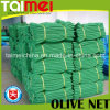 Square Olive Collection Harvest Netting for Tunisa Greece