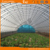 High Quality Arch Greenhouse for Vegetable Planting