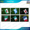 Custom Hand Flags, Hand Held Stick Flags (NF10F01007)