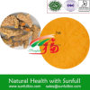 Factory Supply Turmeric Extract 95% Curcumins